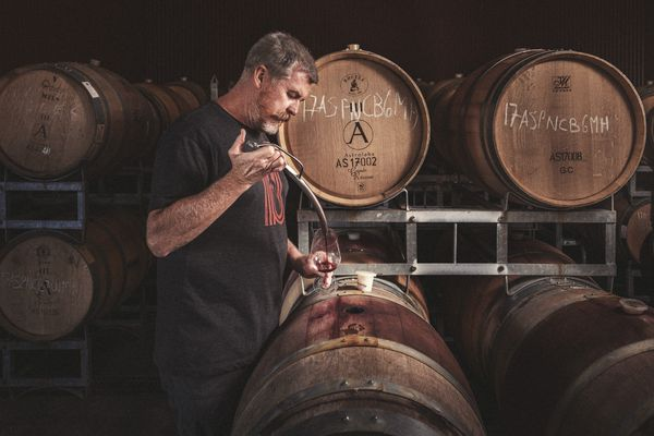 Winemaker Simon Waghorn using a barrel thief to sample pinot noir.