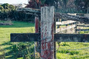 An old fence post.