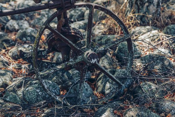 An old wheel at Comelybank vineyard.